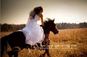 horse + rider image
